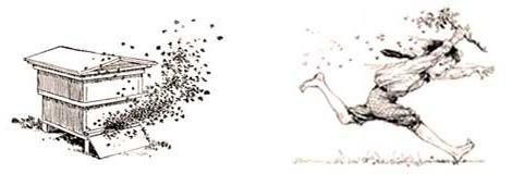 Logo včelařství havelka